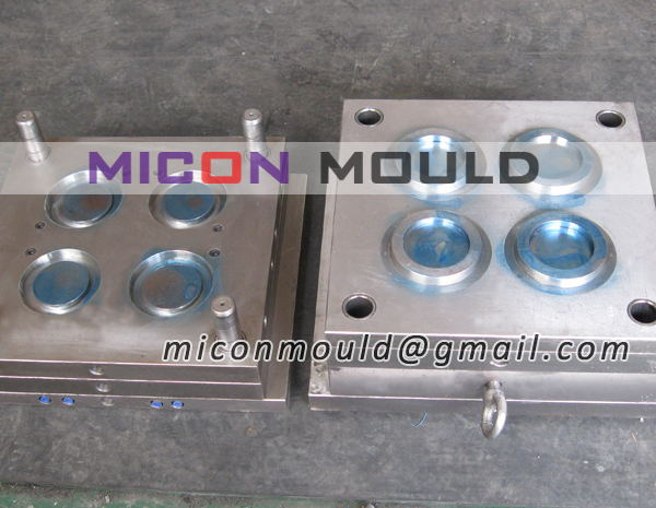 petri dish mould